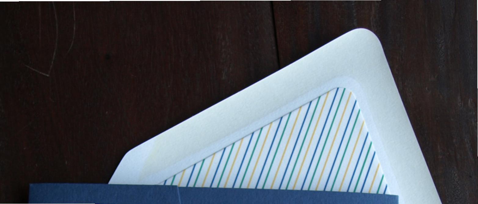 erickson design pinstripe envelope liner
